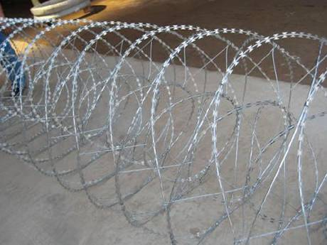 Concertina Wire Enhancing Fencing Wall And Border Security
